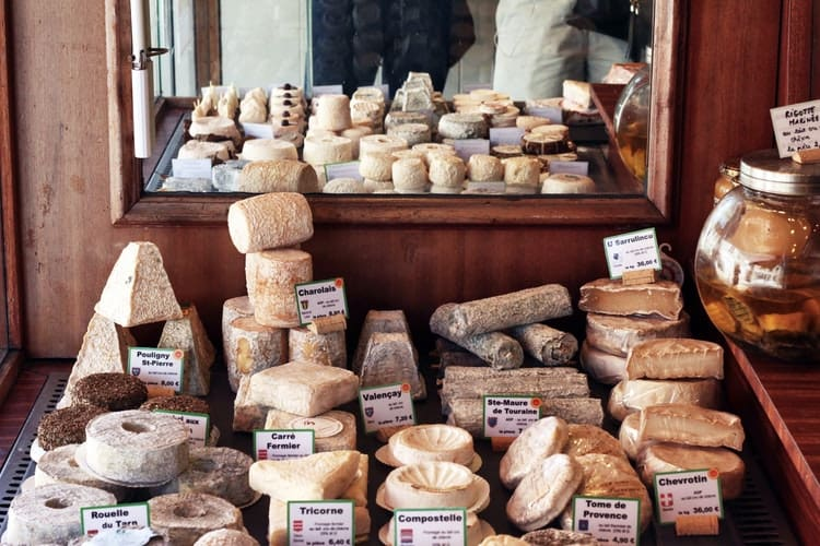 5 Books Of Cheese: Learning The World Of Cheese Deeper