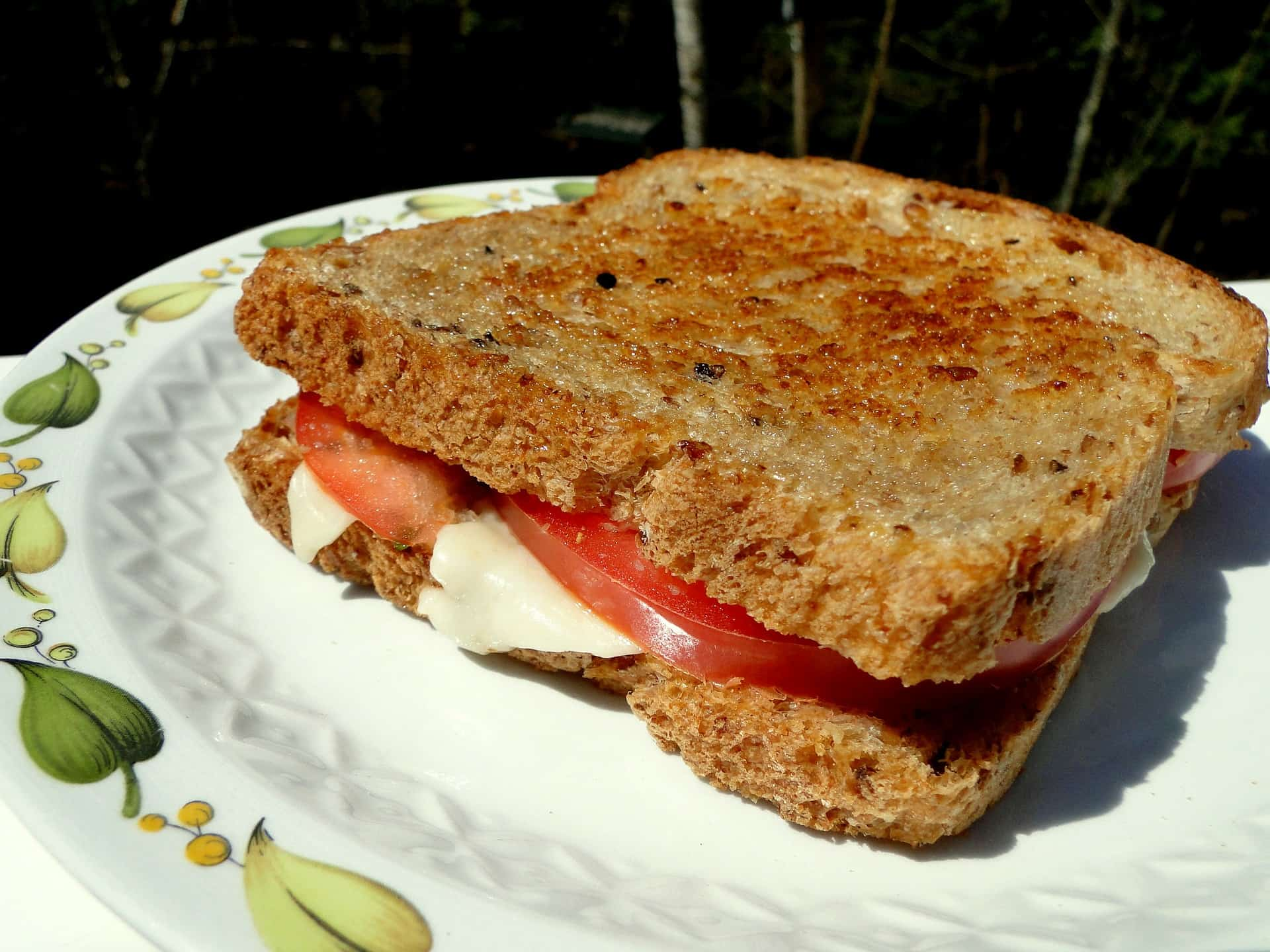 Grill Cheese | Make It A Healthy Indulgence