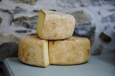 Eating Cheese Benefits